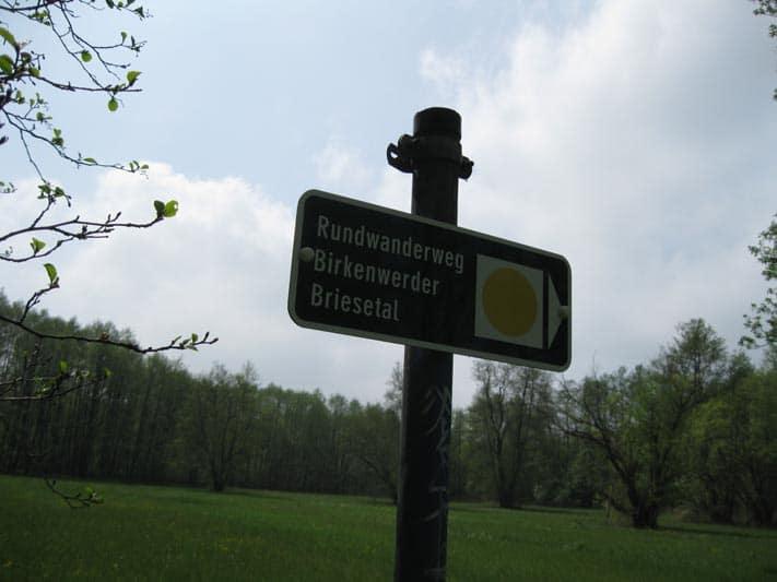 Bilder-Briesetal-Birkenwerder 004
