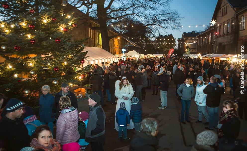 Bild Wochenend- Weihnachtsmarkt in den Späth'schen Baumschulen