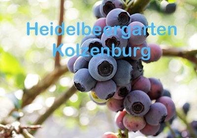 Heidelbeergarten Kolzenburg
