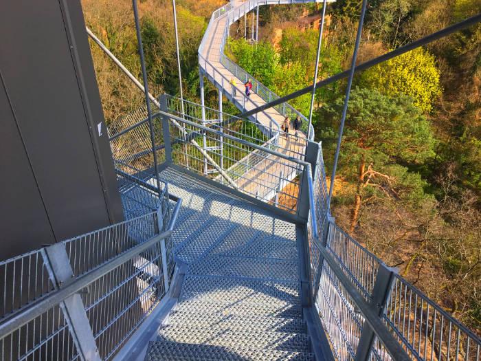 Bild BaumundZeit Baumkronenpfad treppe plattform700