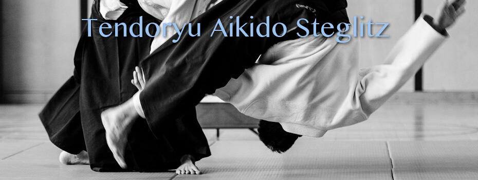 Bild Tendoryu Aikido Verein Steglitz