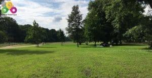 Bild-Treptower-Park-Uferwiesen