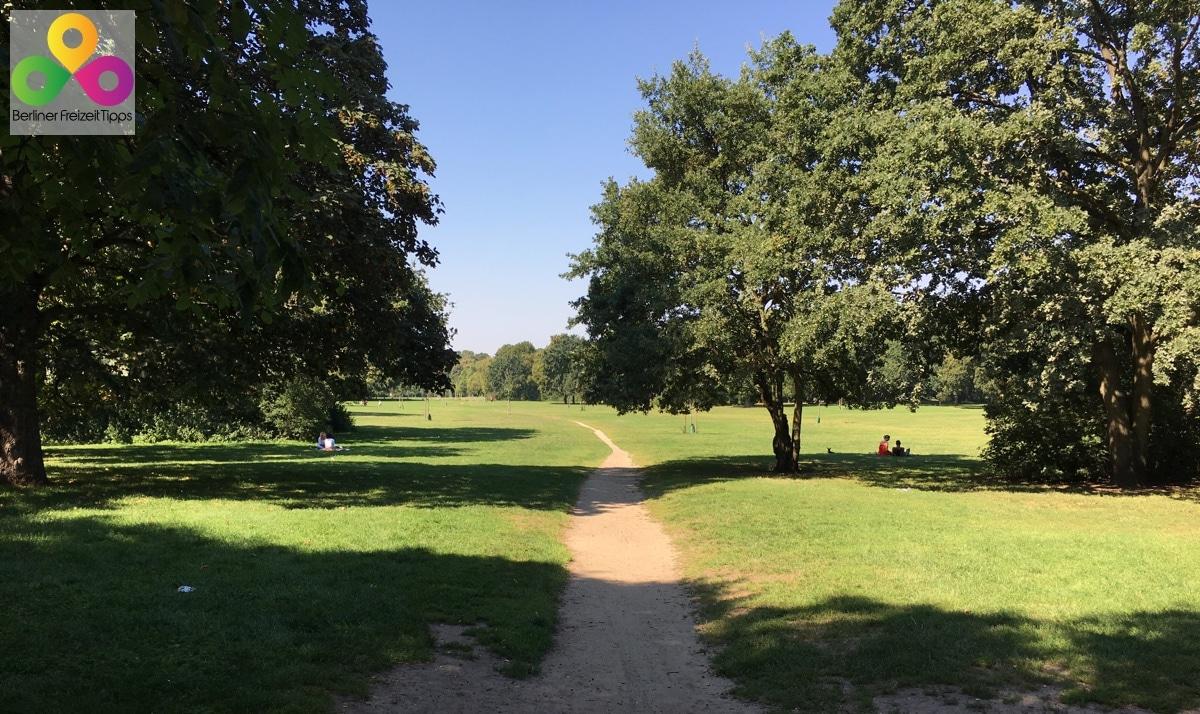 Bild Volkspark Hasenheide
