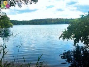 kostenlose Badestellen Hellsee