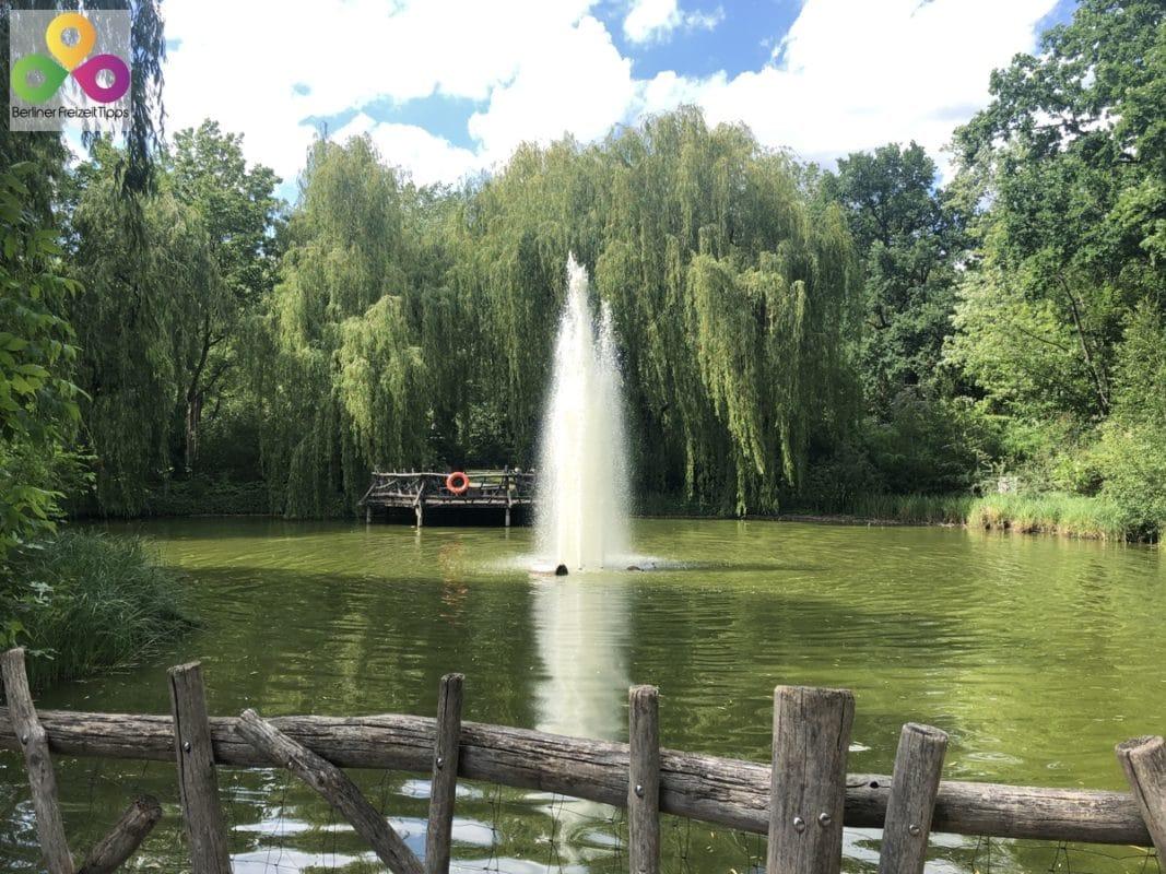 kleiner Teich Volkspark Friedrichshain
