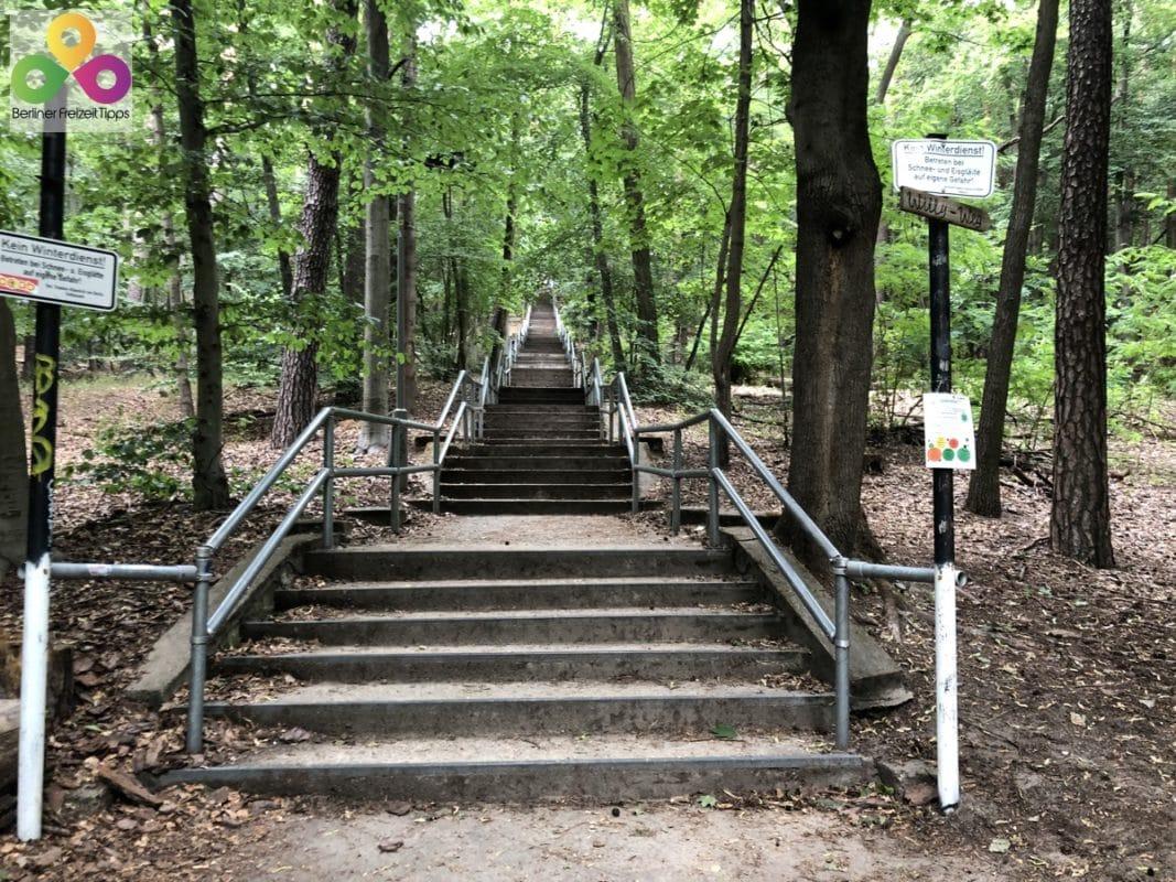 Treppe zum Müggelturm