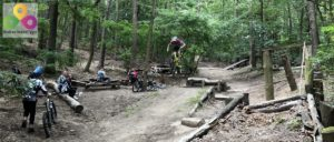 Bild Downhill Strecke Mueggelberge