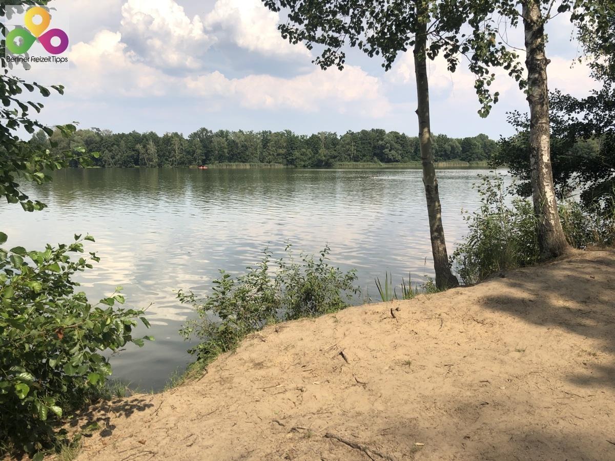 Bild kostenlose Badestellen Falkenhagener See Neuer See