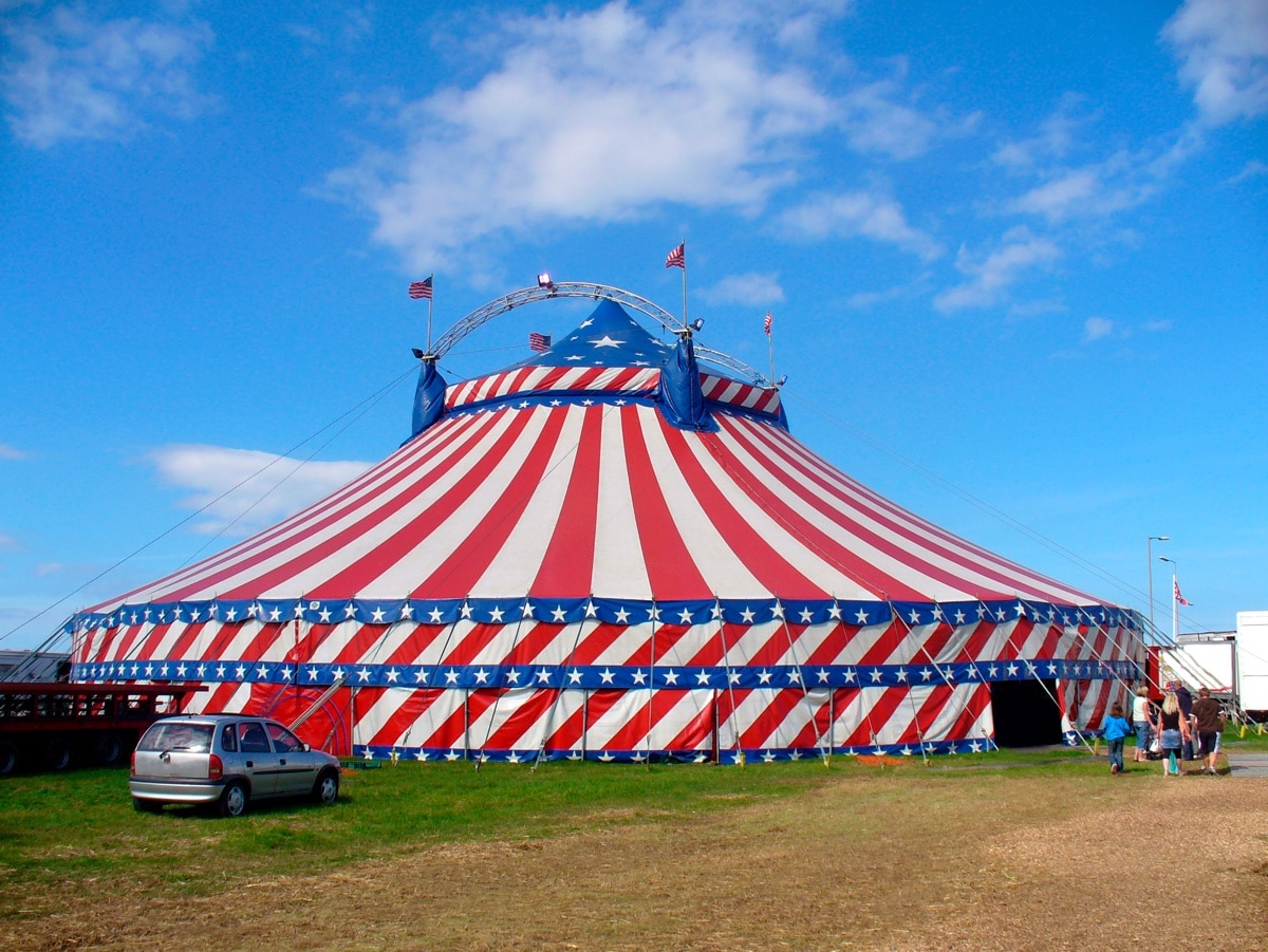 Bild Circus Berlin
