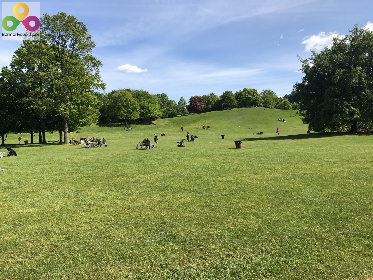 Bild Wiese Britzer Garten